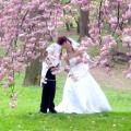 Весілля навесні: кілька порад